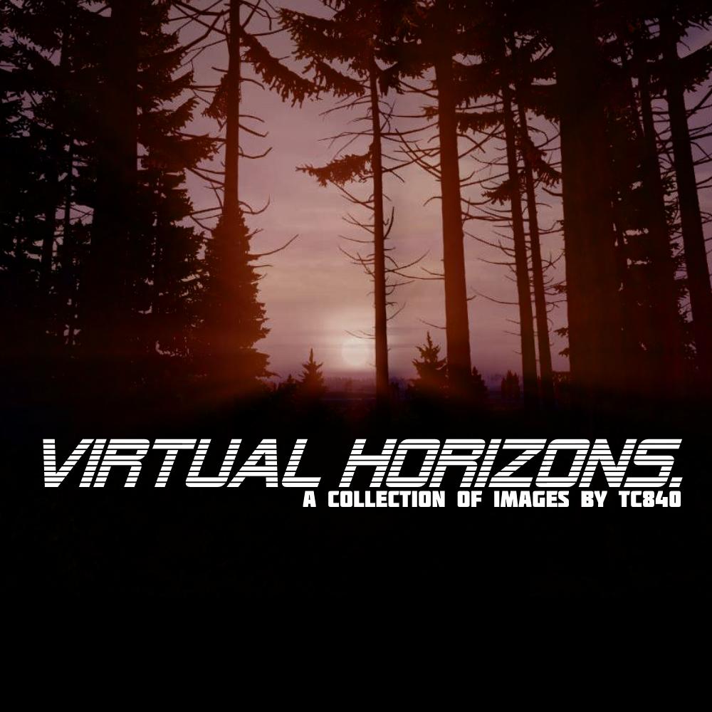 virtualhorizons cover